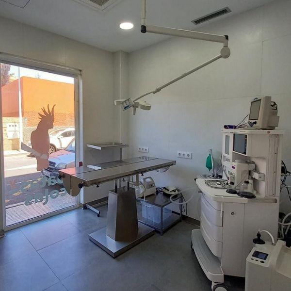 Quirófano Hospital Veterinario Patas y Colas