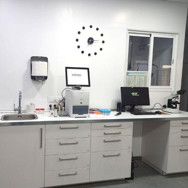 Laboratorio Hospital Veterinario Patas y Colas